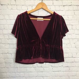 Urban outfitters cropped velvet top
